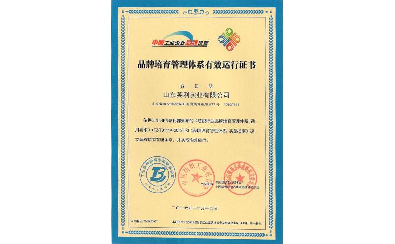 品牌培育运行证书