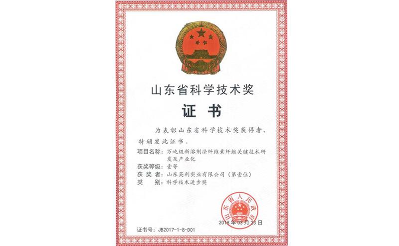 山东省科技奖证书